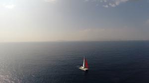 Catamarans 3